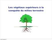 4 l2s3 racines tiges