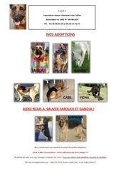 nos adoptions1