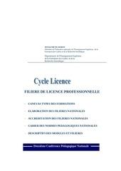 Fichier PDF canevaslicenceprofessionnelle