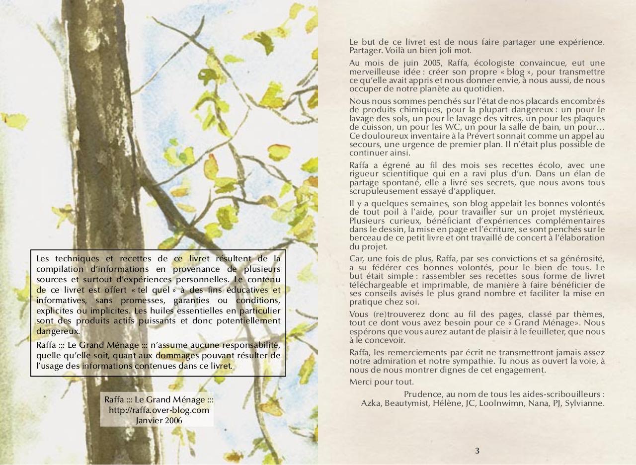 aper u du fichier le grand m nage par raffa le grand m page 2 29 fichier pdf. Black Bedroom Furniture Sets. Home Design Ideas