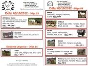 Fichier PDF recap sauvetages 04 10 2012