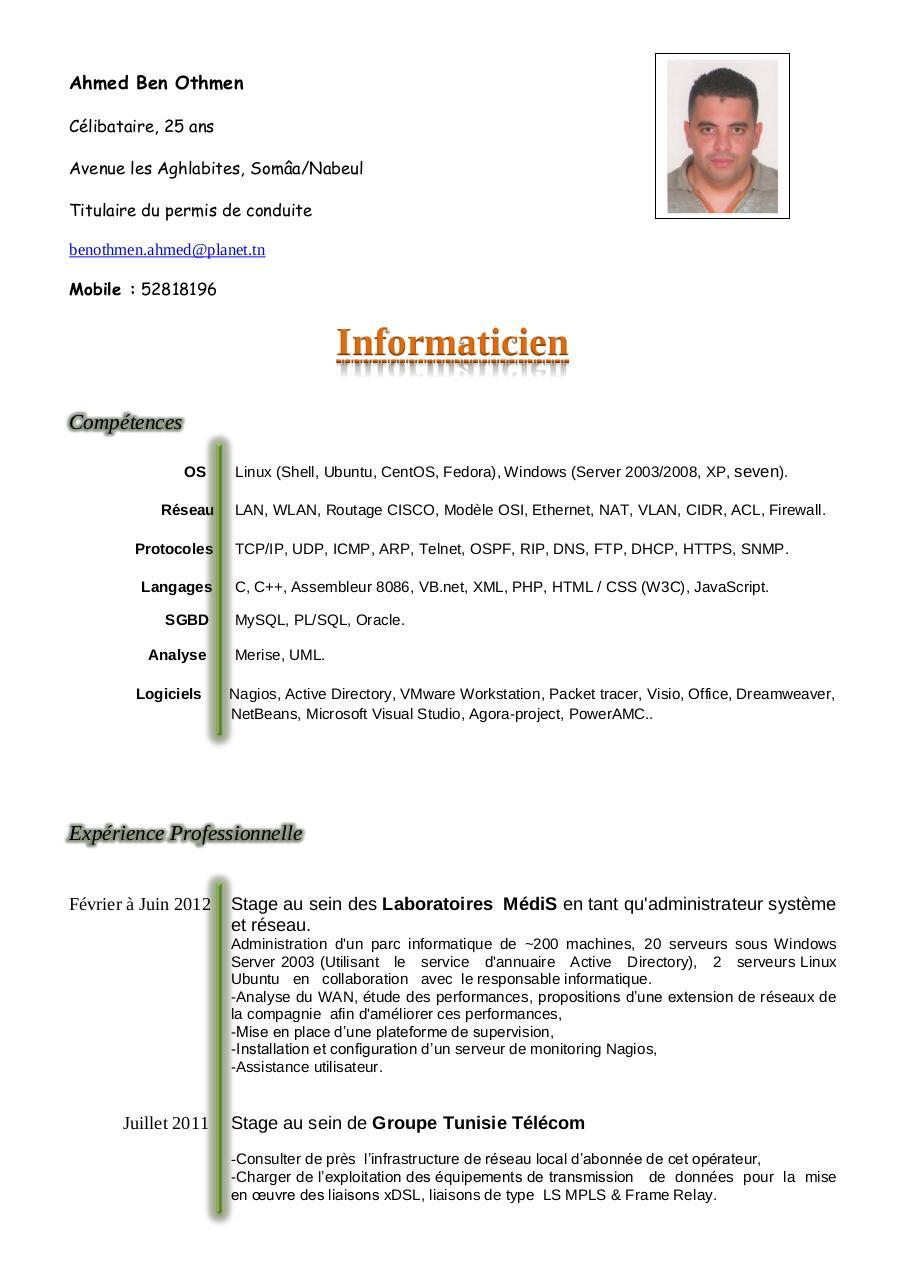modele cv en anglais pdf