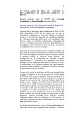 Fichier PDF rapport amazonie 2012 gitpa diffusion