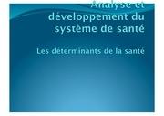 Fichier PDF determinants de la sante dec 2012