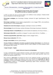 Fichier PDF objectifsstagesiut