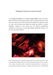 Fichier PDF les revenants de la mort das log
