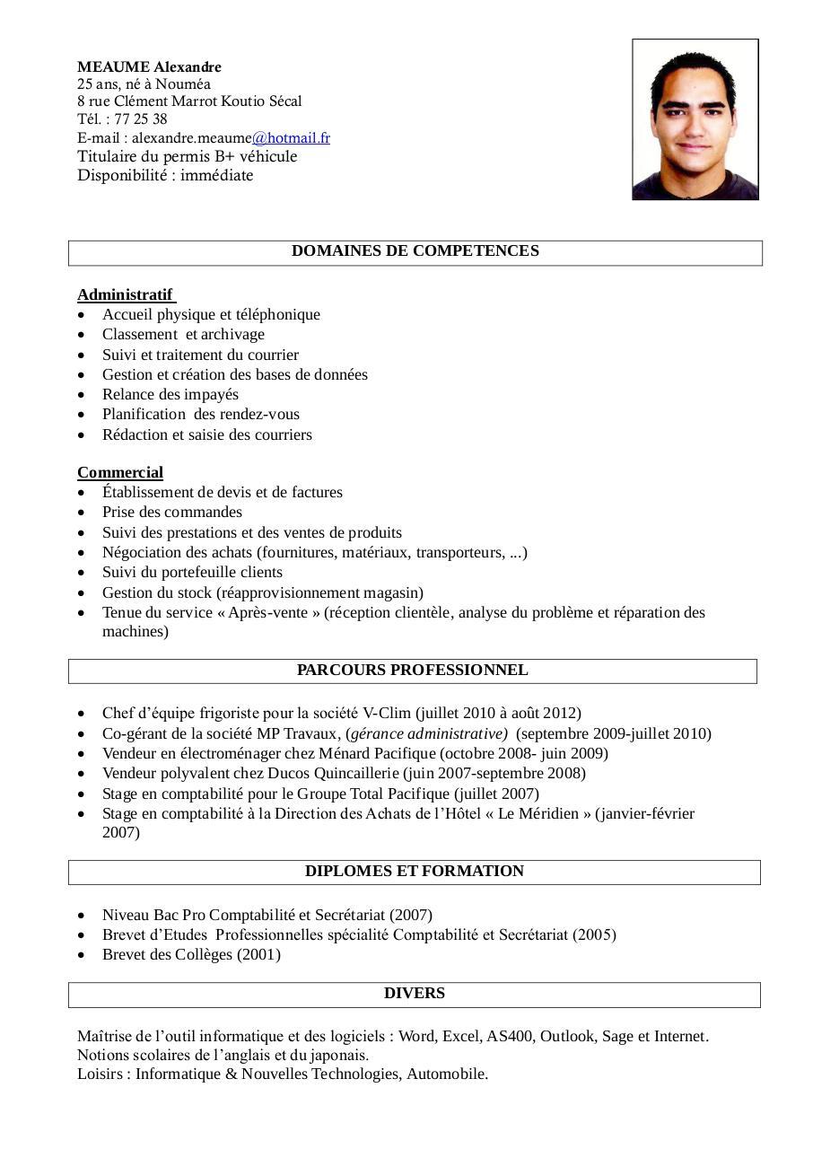 cv alexandre meaume  cv alexandre meaume pdf