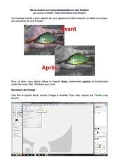 Fichier PDF couleur sur noir et blanc