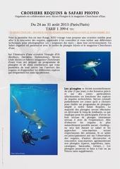 safari requins photo 1
