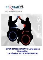 open handikarate 2013