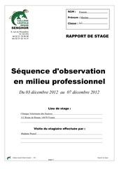 rapport de stage 20122013 1