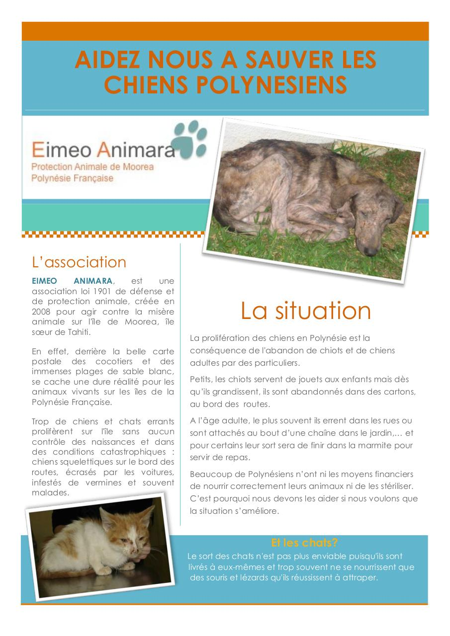 Eimeo Animara_newsletter_1.pdf - page 1/2
