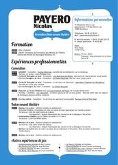 Fichier PDF cv 5