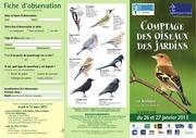 oiseaux jardins2013