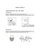 Fichier PDF exemple muscu