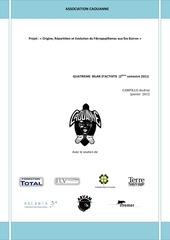 bilan 2ieme semestre 2011