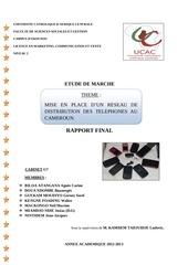 Fichier PDF distribution des telephones au cameroun afrique 2013