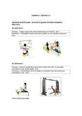 Fichier PDF dos pecs quads ischios fessiers mollets