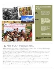 rapport d activite annuel 2012 a p m