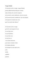Fichier PDF voyage lointain