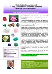 gb remedies essences class level 1 2 at masserac 1
