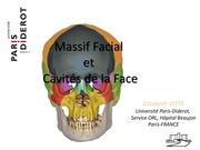 Fichier PDF massif facial cavit s de la face paces 2012 pdf blanc