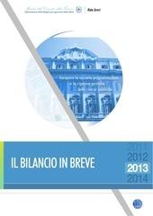 bilancio in breve 2013