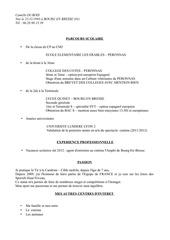 Fichier PDF cv