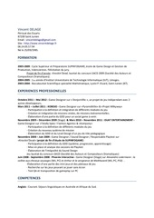 Fichier PDF cv vincent delage word