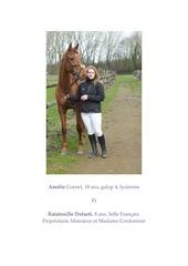 portrait cavaliers chevaux