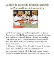 Fichier PDF ceintures noires 2013
