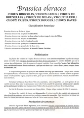 Fichier PDF choux brassica oleracea