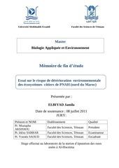 Fichier PDF elbiyad pfe