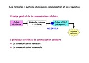 Fichier PDF 1 endocrinologie