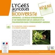 apiformes depliant2012