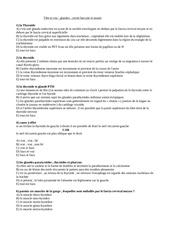 Fichier PDF tete et cou 3