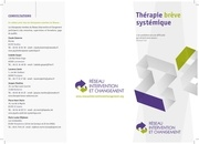 reseau intervention et changement therapie breve