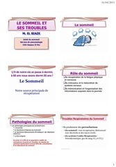 Fichier PDF saosours2013slides6diapo