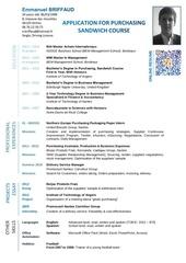 Fichier PDF cv emmanuel briffaud anglais