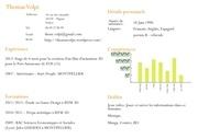 Fichier PDF cv french 2