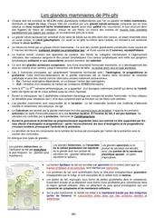 Fichier PDF fiche sein fifou