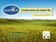 l experience napolis 1