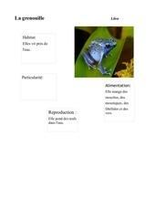 Fichier PDF lilou grenouille