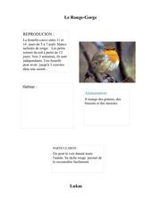 Fichier PDF lukasrougegorge