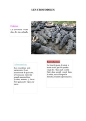 Fichier PDF tessacroco