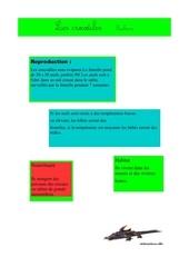 Fichier PDF zacharie 1