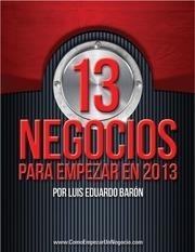 13 negocios 2013