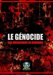 le genocide aux musulmans en birmanie