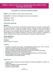 conseiller insertion professionnelle