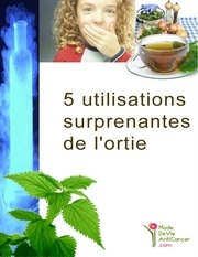 orties 5utilisationssurprenantesdelortie